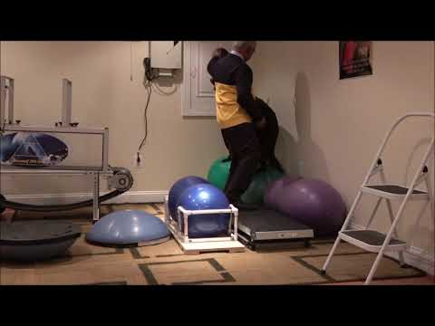 Isometric Conditioning with ActoBands actobandk9 ActoBandK9 Resistance System 0