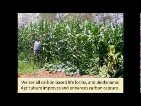 Biodynamic Agriculture #1  Hugh Lovel ; Weston Price/Nourishing Traditions Conference 2011