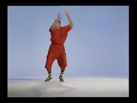 Kung Fu monkey style
