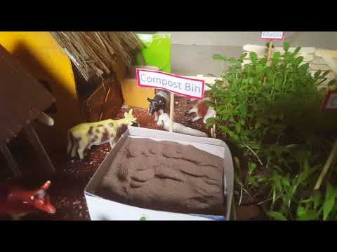 School Project – Organic Gardening and Go Green (Close Up)