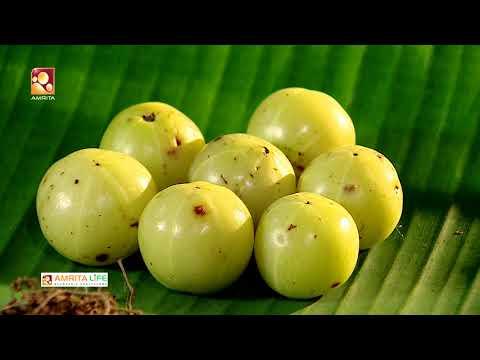 Ayurvedic treatments & Ayurvedic medicines | Jeevadhara | Episode 65