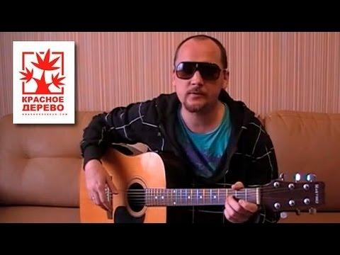 Видео обзор Владимира Сорокина слайда из дерева палисандр - YouTube