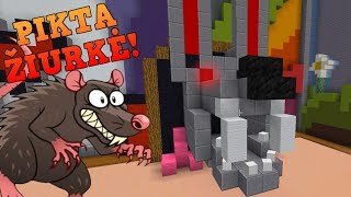 PIKTA ŽIURKĖ! // Build Battle