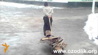 "Uzbek Жиззахлик талабаларга яна ""металл солиғи"" солинди"