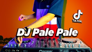 DJ PALE PALE VIRAL TIK TOK ! Magic In The Air ( DJ Nansuya & DJ DESA Remix )