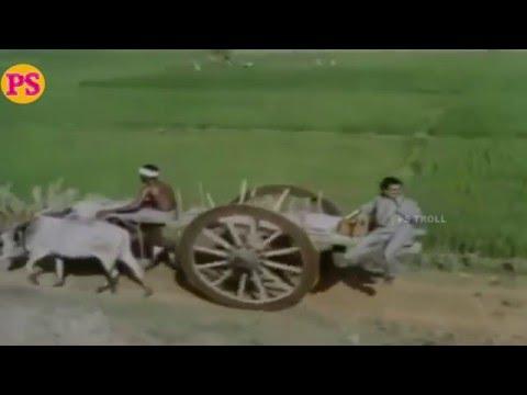 Solai Malare Nenjai-சோலைமலரேநெஞ்சைதாலாட்டும்-K J Yesudas Solo Melody H D Song
