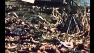 The Last Days of World War II   Volume 01 18 24 February]