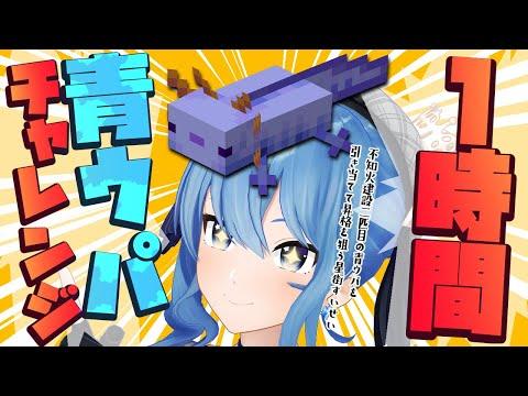 【Minecraft】結局するんか青ウパチャレンジ‼【ホロライブ / 星街すいせい】