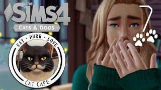 The Sims 4: Кафе с кошками #7 - ЭТО ШО ЗА ТЕЛКА?! |КОШКИ и СОБАКИ|