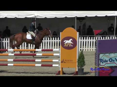 228S Elizabeth Meehan on Marco Q JR Novice Show Jumping Woodside May 2017