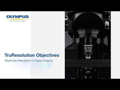Olympus TruResolution Objectives   Maximize Resolution in Deep Imaging