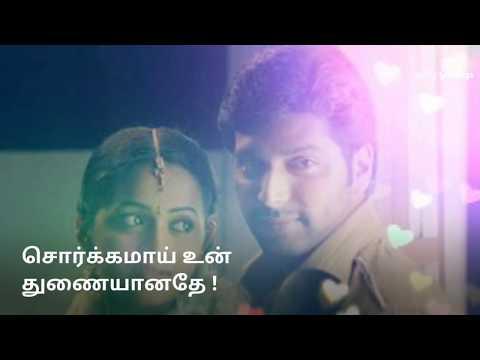 Love Song | Dhol Bhaje,,,...Aasa Patta Ponnu Kedaicha |  Whatsapp Status | Deepavali