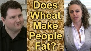 Wheat & Weight Gain! Is Wheat Healthy or Does it Cause Obesity? Comments on Wheat Belly