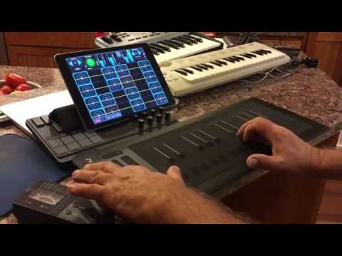 GeoShred MIDI/MPE! Asia Dreaming Voiced For Roli Rise