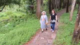 越南旅遊--美山(Mỹ Sơn)占城聖地D / 世界遺產參訪