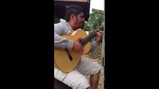 Gipsy Kings A mi manera (cover)