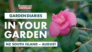 Gardening in August | NZ South Island | Bunnings Garden Diary
