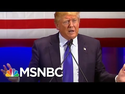 """Richard Painter: Donald Trump EPA Chief Actions """"Disgusting"""" 