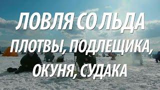 видео Где рыбачить на Вазузском водохранилище?