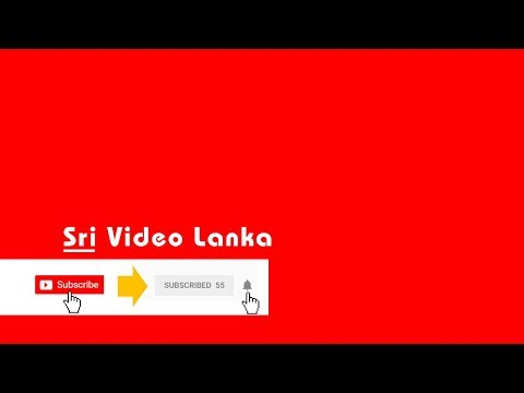 sinhala reggae, bongo fun songs - Sri Video Lanka [ ශ්‍රි වීඩියෝ ලංකා ]