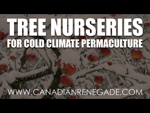 Tree Nurseries for Cold Climate Permaculture Projects