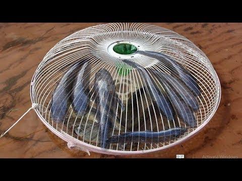 Wow ! ! Amazing Electric Fan Guard Fish Trap - Net Fishing In The River At Siem Reap