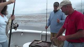 Deep Sea Fishing - Oceanside, CA
