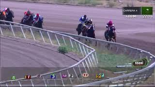 Vidéo de la course PMU PREMIO INDIA MAGICA