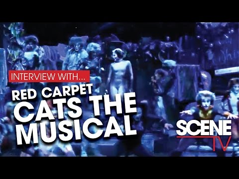 CATS The Musical–Adelaide Festival Theatre – Walking the Catwalk
