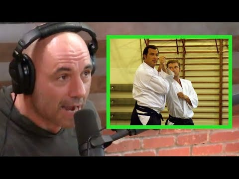 Joe Rogan - Is Steven Seagal Legit?