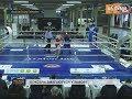 Бокс любительський та професійний