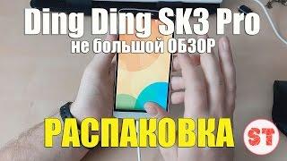 Ding Ding SK3 Pro. Динь-Динь - распаковка смартфона