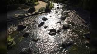 堺市へドライブ 行き先:仁徳天皇陵 大仙公園 作成:slidestory(Iphone)