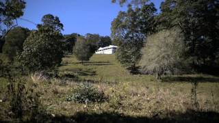 YOURS TO DISCOVER - Farm For Sale Northern Rivers NSW AUSTRALIA