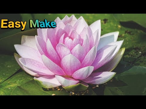 How to make a lotus flower Easy paper diy gift,Home decoration
