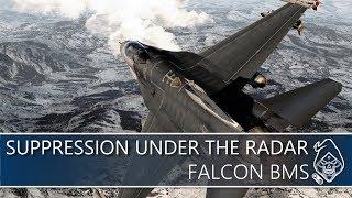 FALCON BMS: SUPPRESSION UNDER THE RADAR