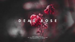 Dead Rose - Sad Guitar Instrumental | Post Malone Type Trap Beat