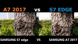 GALAXY A7 2017 vs S7 EDGE !! CAMERA TEST !! REVIEW