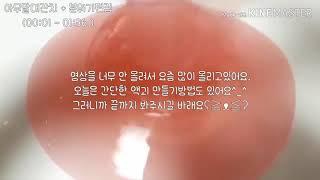 새콤달콤 홍시 스무디