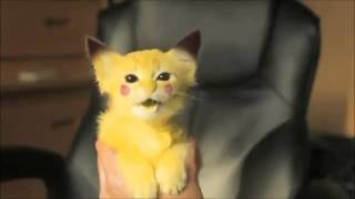 Gatito convertido en Pikachu