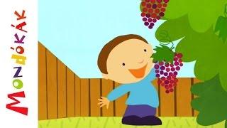 Elmentem én a szőlőbe (Gyerekdalok és mondókák, rajzfilm gyerekeknek)