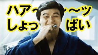 【なつかCM】ハァ~しょっぱい! ザルツライオン(細川たかし)①