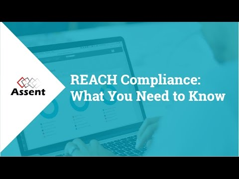 [Webinar] REACH Compliance: What You Need to Know