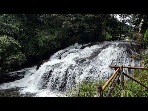 Trekking @ Doi Inthanon National Park / Chiang Mai