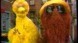 Sesame Street Havin Rainy Day Picnic