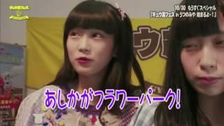 まねきケチャ&ギュウゾウMCのとちぎテレビ特別番組 10/30開催『ギュウ...