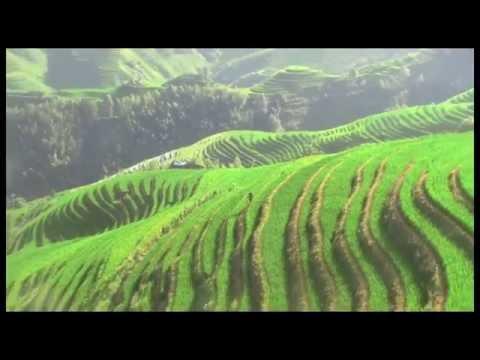 Longji Rice Terraces - Guangxi, China