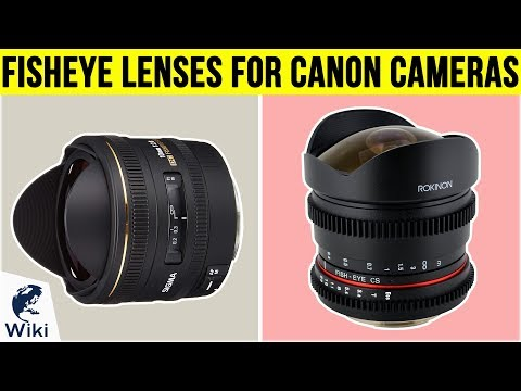 9 Best Fisheye Lenses For Canon Cameras 2019