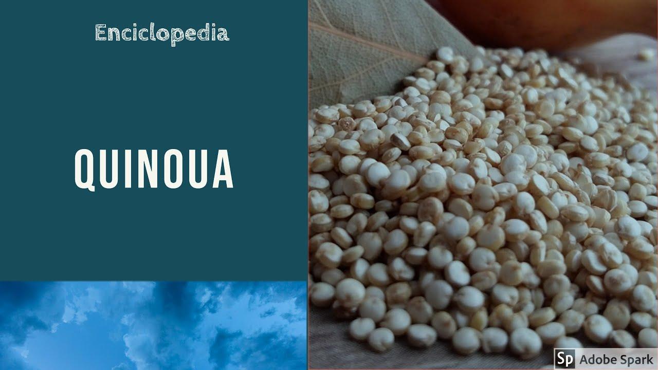 quinoa pierdere în greutate povești de succes
