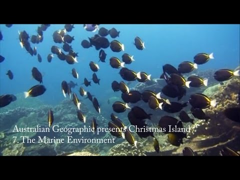Australian Geographic presents Christmas Island - Part 7: The Marine Environment